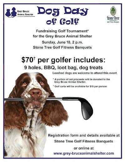 Dog Day of Golf